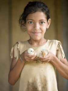 Girl holding two chicks